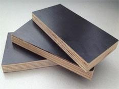 覆膜建筑模板供应