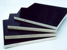 松木建筑模板厂家