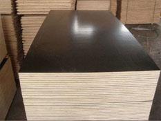 建筑模板质量